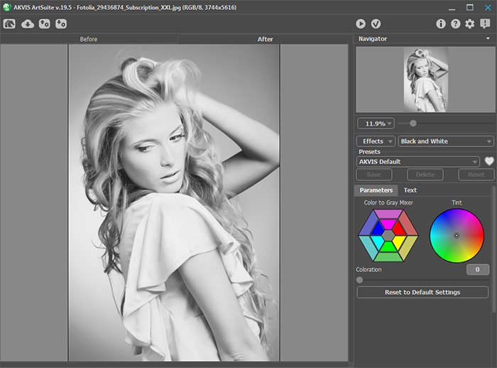 AKVIS ArtSuite Plugin's Workspace: Black and White Effect