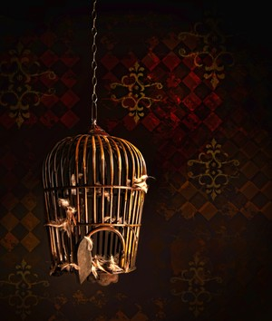 Background With Birdcage