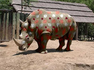 Result: rhino picture