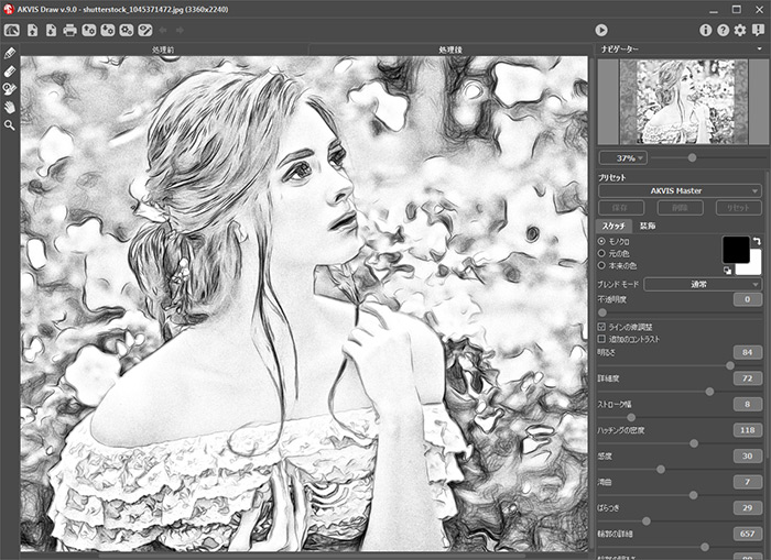 Convert the image into a pencil sketch