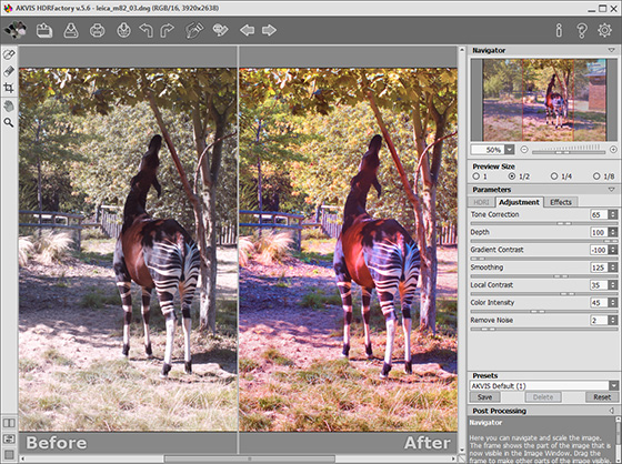 Processing the Image in the Adjustment Tab
