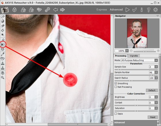 Selecting and Removing Stains With the AKVIS Retoucher Plugin