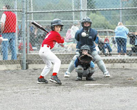 Source baseball photo