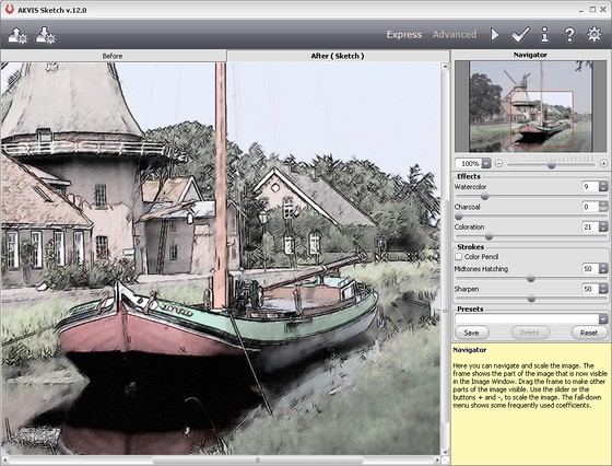 Colorisation