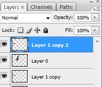 Copy the Layer