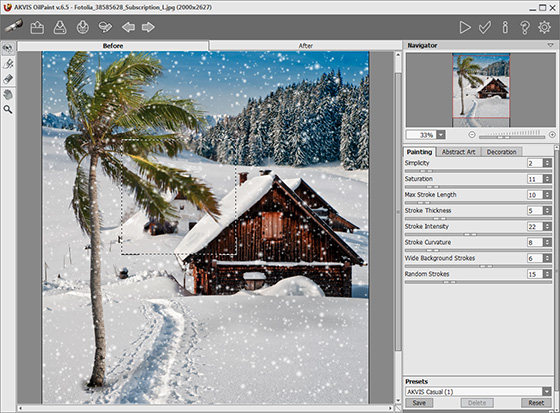 AKVIS OilPaint Plug-in Workspace
