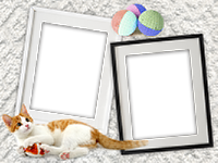 Frames: Cats Pack