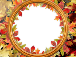Fall Foliage Pack