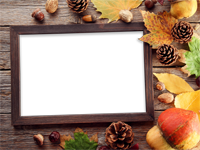 Frames: Fall Foliage Pack