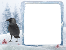 AKVIS ArtSuite: Winter Pack